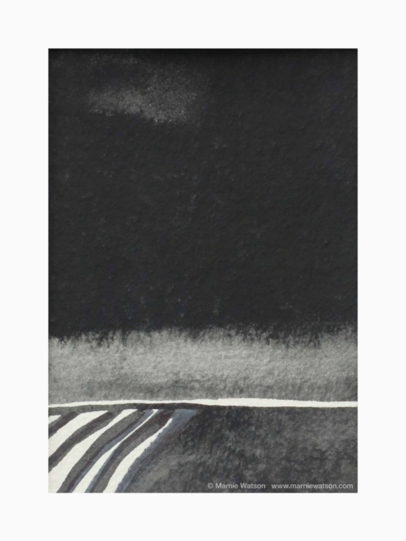 149 The Vineyard 1 By Marnie Watson