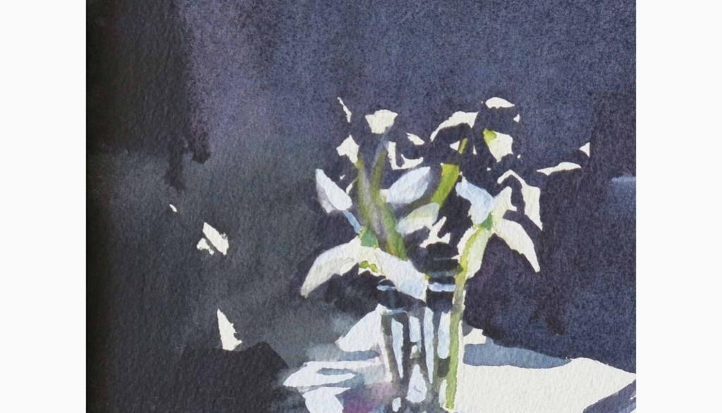 153 Snowdrops 2 by Marnie Watson