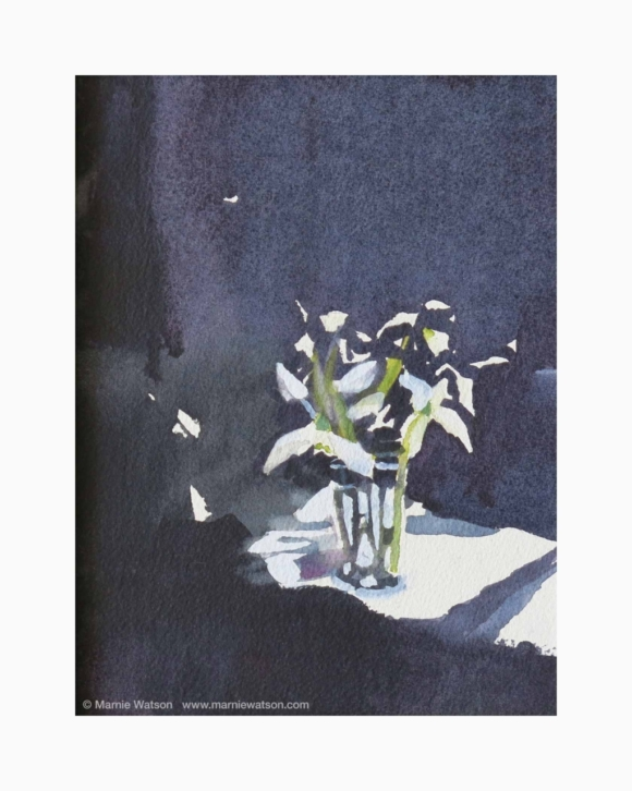 153 Snowdrops 2 by Marnie Watson